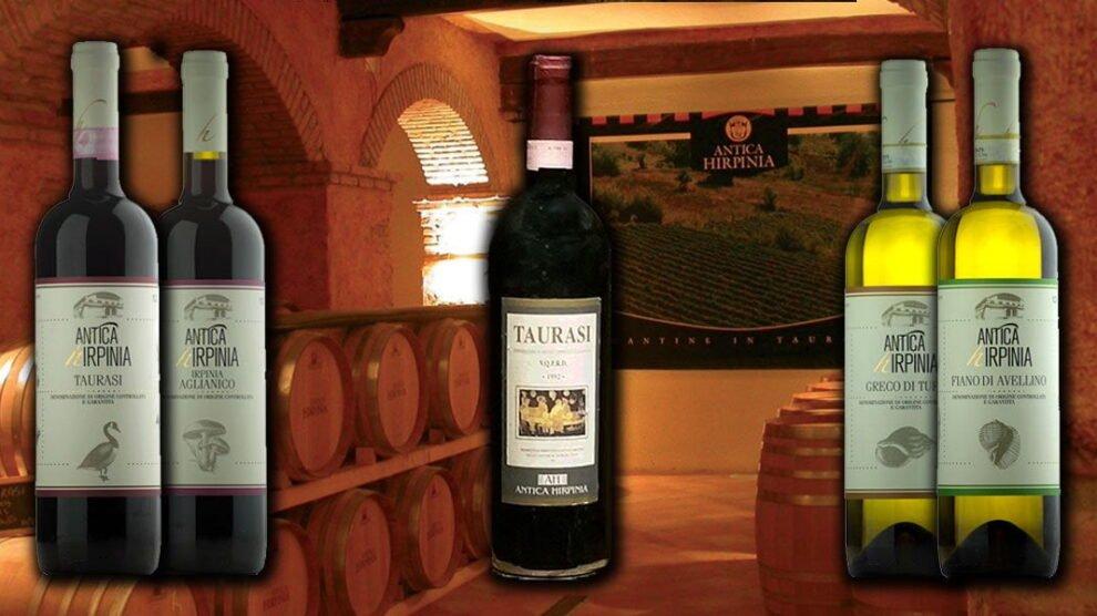 I vini di Antica Hirpinia a Taurasi